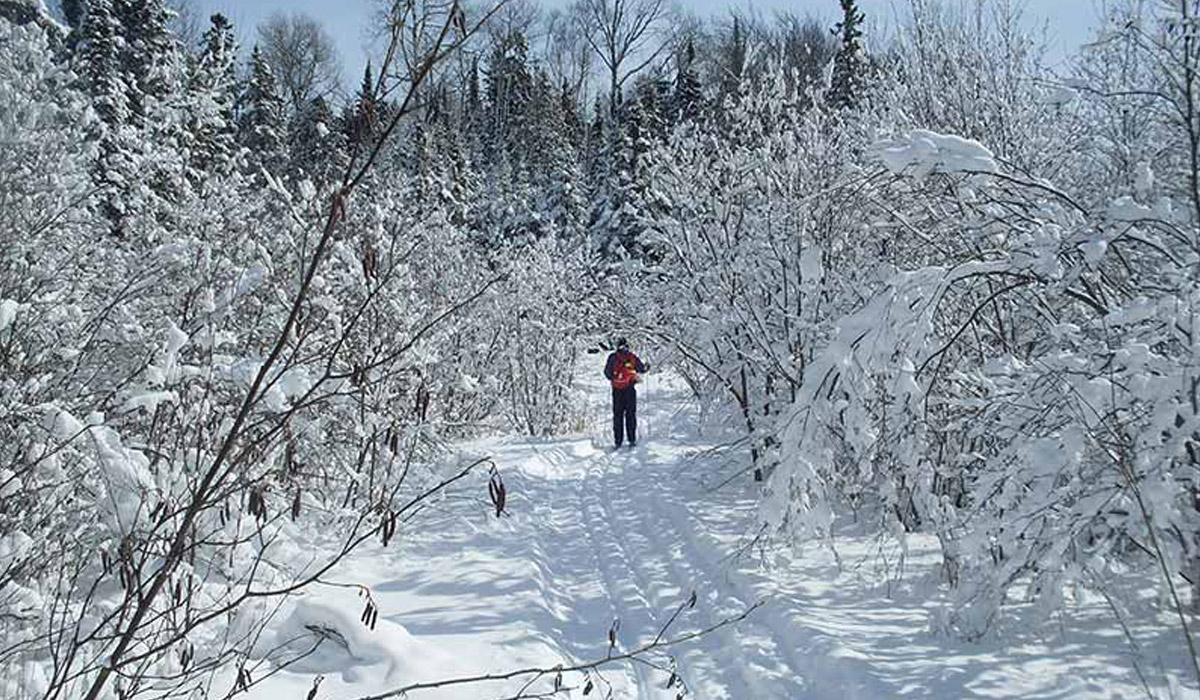 Thessalon Ski Trails